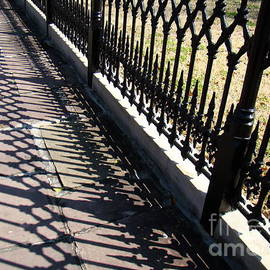 Eva Kato - Wrought Iron Fence