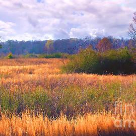 Judi Bagwell - Louisiana Meadow