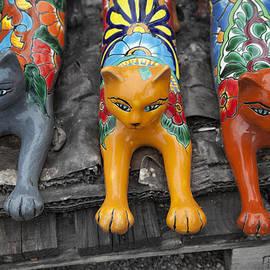 Greg Kopriva - Yard Kitties