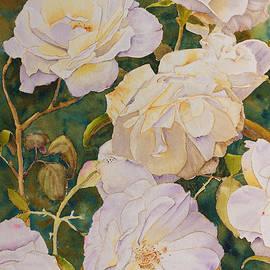 Melanie Harman - Yarrambat Roses