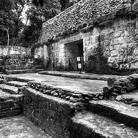 Brandyn King - Yaxha Mayan Temple
