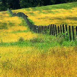 Emanuel Tanjala - Yellow afternoon