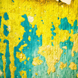 Silvia Ganora - Yellow and green abstract wall