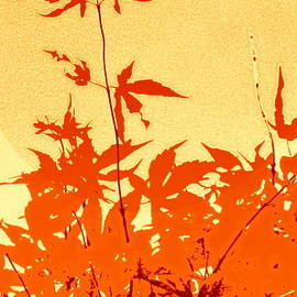 Kathy Barney - Yellow and Orange Haiku