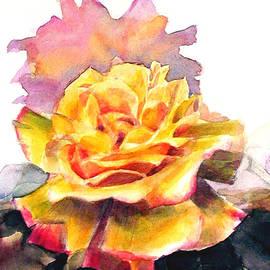 Greta Corens - Yellow Rose Fringed in Red