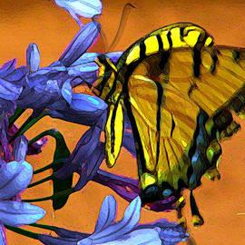 Douglas MooreZart - Yellow Butterfly on Agapanthus