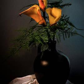 Hugo Bussen - Yellow Callas