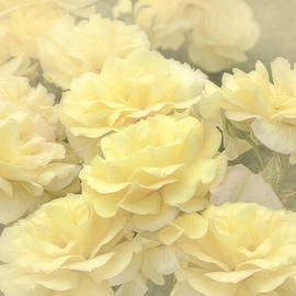 Jennie Marie Schell - Yellow Chiffon Rose Garden