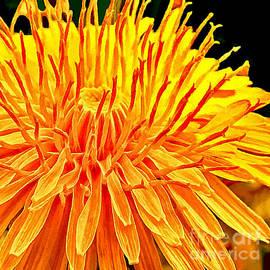 Bob and Nadine Johnston - Yellow Chrysanthemum Painting
