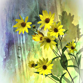 Judy  Johnson - Yellow Daisies