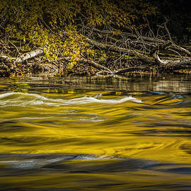 Randall Nyhof - Yellow Fall Reflections on the Thornapple River