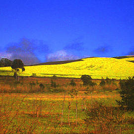 Lenore Senior and Constance Widen - Yellow Fields - South Africa