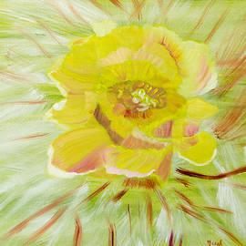 Meryl Goudey - Cactus Contrasts