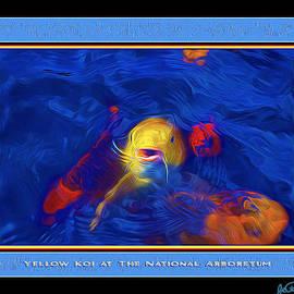Joe Paradis - Yellow Koi At The National Arboretum