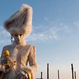 Zina Zinchik - Yellow Rose Charmer