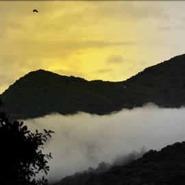 Kathy Barney - Yellow Sky with Mountains and Birds