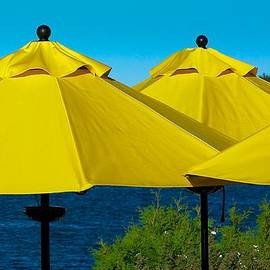 Stuart Litoff - Yellow Umbrellas