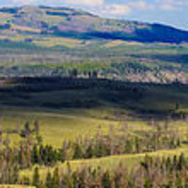Jennifer White - Yellowstone Caldera Panoramic