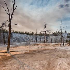 Andres Leon - Yellowstone Desolation