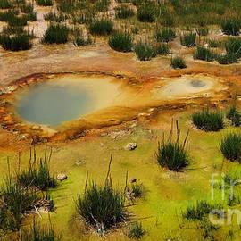 Ausra Paulauskaite - Yellowstone Hot Pool