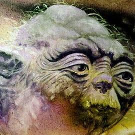 Richard Tito - Yoda
