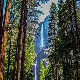 Dany  Lison - Yosemite Falls