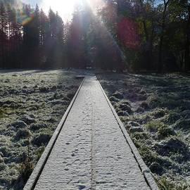 Mike Barnes - Yosemite Meadow Snow
