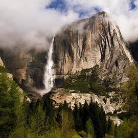 Donna Kennedy - Yosemite Valley View