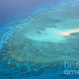 Christine  Dekkers - You Found Me Great Barrier Reef Australia