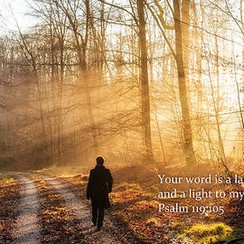 Matthias Hauser - Your word is a light to my path bible verse quote