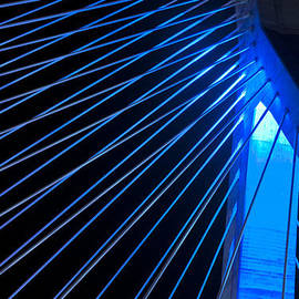 Joann Vitali - Zakim in Blue - Boston