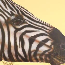 Darren Robinson - Zebra