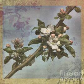 Andrea Kollo - Zen Garden Tapestry