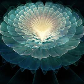 Rhonda Barrett - Zen