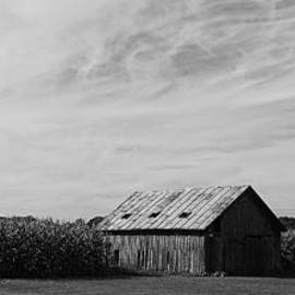 Daniel Thompson - Zink Rd Farm 2 in Black and White