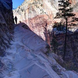 Gary Whitton - Zion National Park Hiker Climbs Hidden Canyon Trail