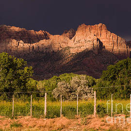 Robert Ford - Zion Peaks lit by Dramatic Sunlight dark and light and storm clouds Rockville Utah