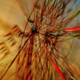 Daniel Thompson - Zooming Ferris Sunset