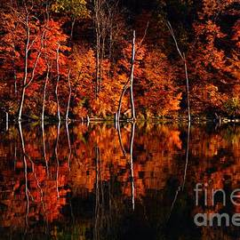 Larry Ricker - Autumn Reflections
