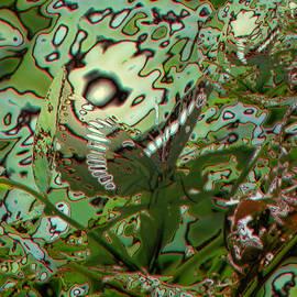 Jeff  Swan - Butterfly