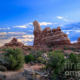 Robert Bales - Eye View of Arches