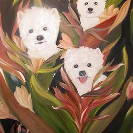 Rachel Carmichael - Home Grown Westies