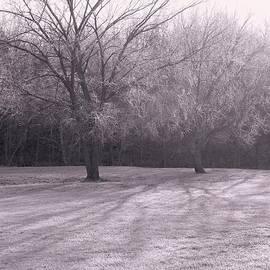 Felix Concepcion - Morning Frost