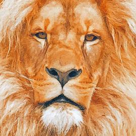 Jerry L Barrett - Old Lion