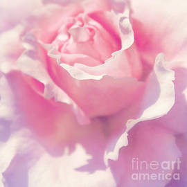 Angela Doelling AD DESIGN Photo and PhotoArt - Pink