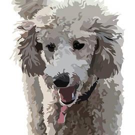 Kris Hackleman - Poodle Portrait II
