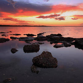 Paul Svensen - Swan Bay Sunset