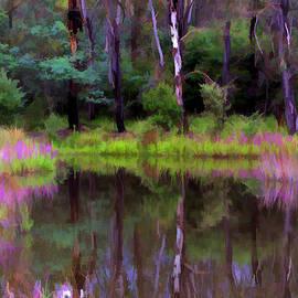Paul Svensen - Tidbinbilla Reflections