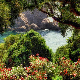 Lois Bryan - View From The Terrace - Paleokastritsa