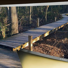 Brian Wallace - Walk Bridge